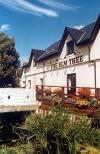 Inn at the Elm Tree (The)